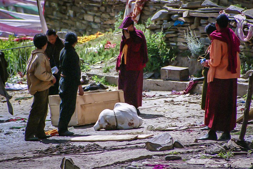 Tibet06---R22a---005.jpg