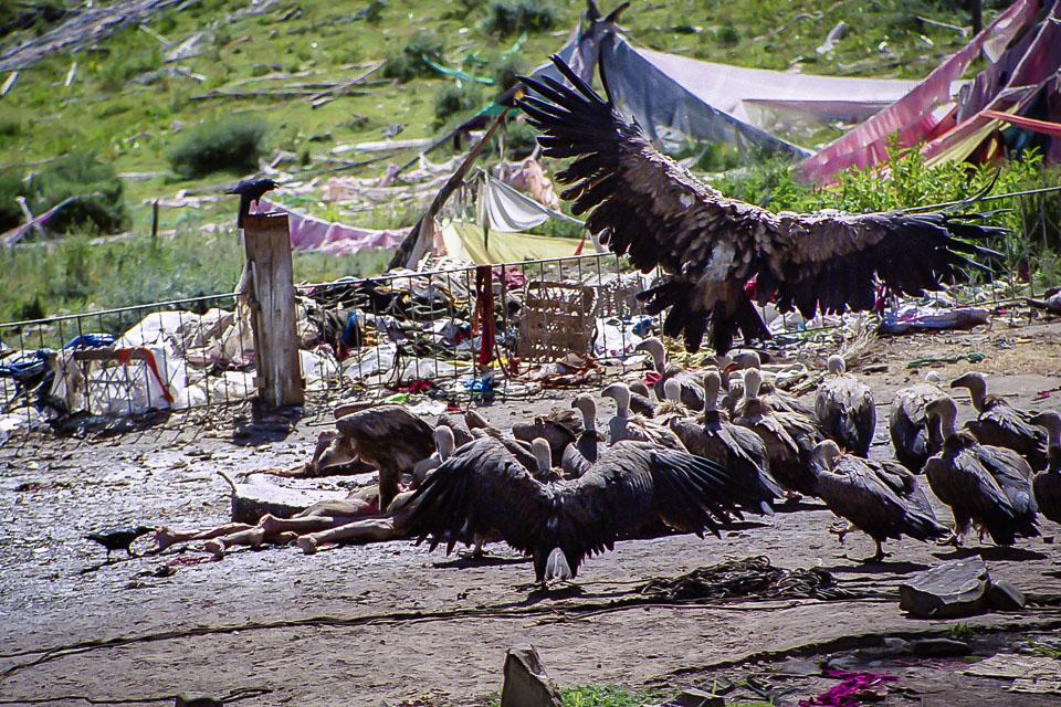 Tibet06---R23a---032.jpg
