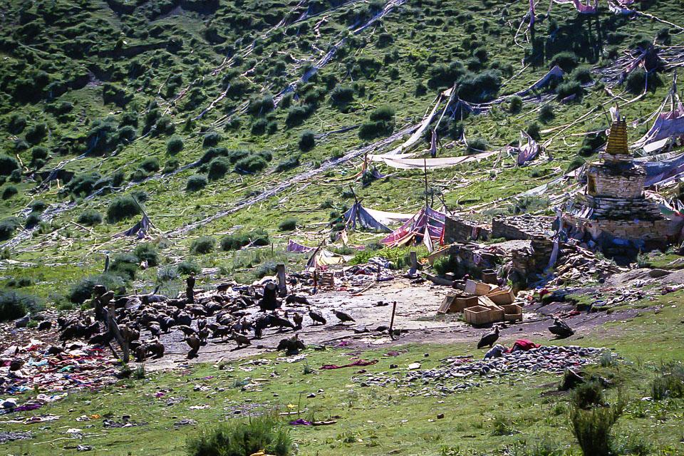 Tibet06---R24a---022.jpg