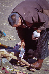 Tibet06---R23a---022.jpg